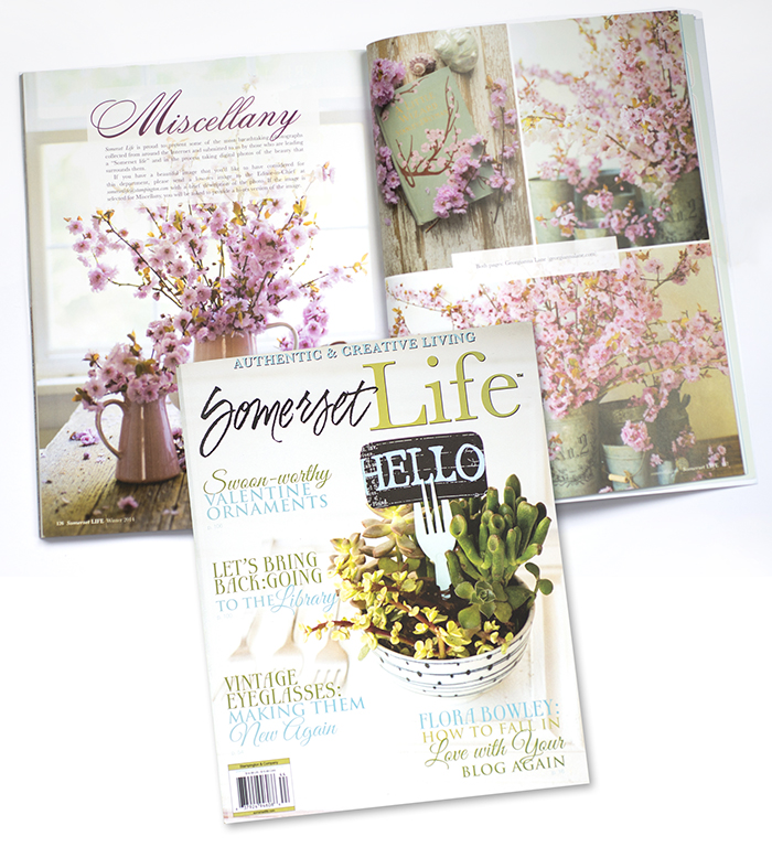 Plum blossoms photographed by Georgianna Lane in Winter 2014 issue of Somerset Life