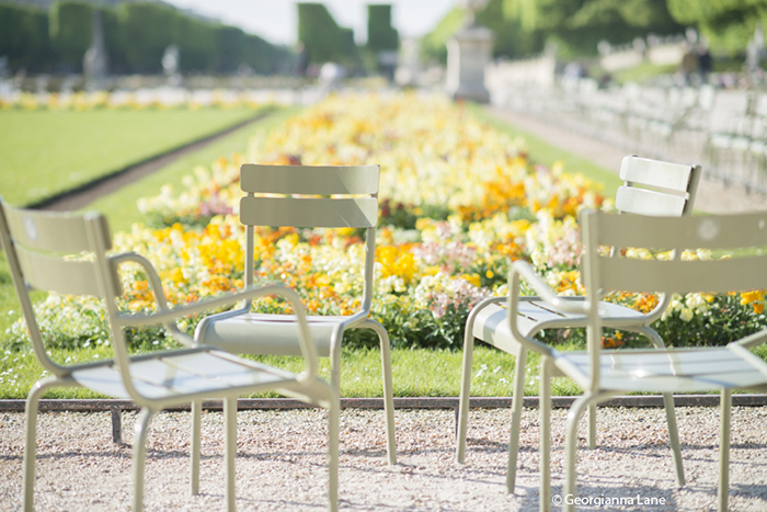 Green Chairs, Jardin du Luxembourg, by Georgianna Lane