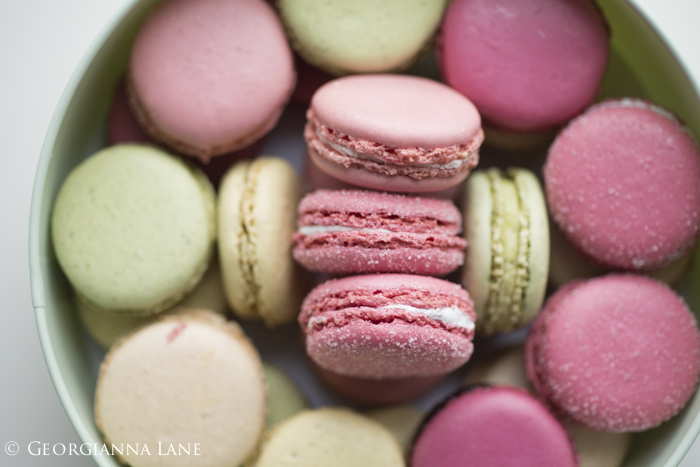 Paris Macarons photographed by Georgianna Lane