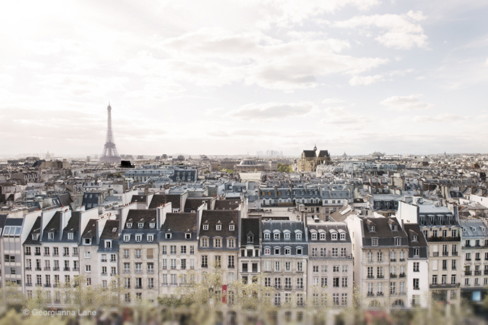 Rooftops of Paris by Georgianna Lane