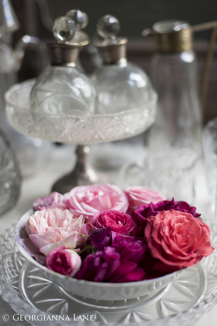 Roses at the Chilean home of María Cecilia photographed by Georgianna Lane
