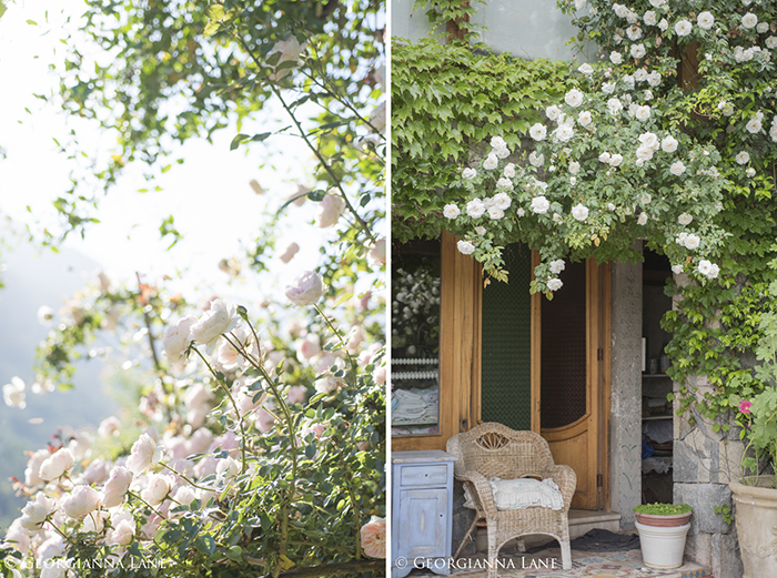 Mon Jardin et Ma Maison Rose at the Chilean home of Maria Cecilia photographed by Georgianna Lane
