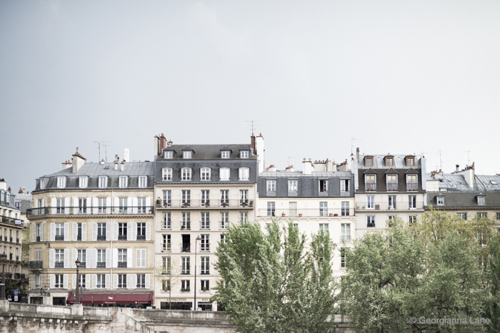 Rooftops, Paris, by Georgianna Lane