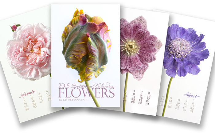 2015 Botanical Calendar by Georgianna Lane