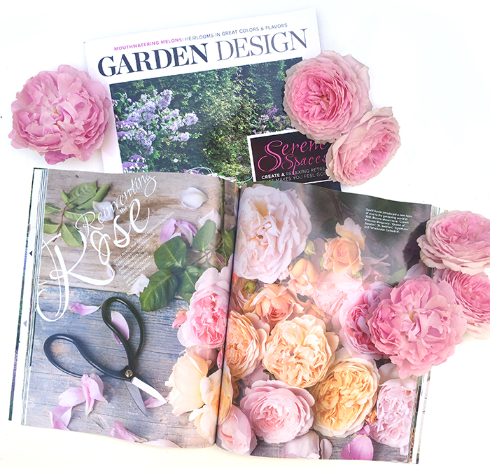 David Austin Roses by Georgianna Lane in Garden Design Magazine