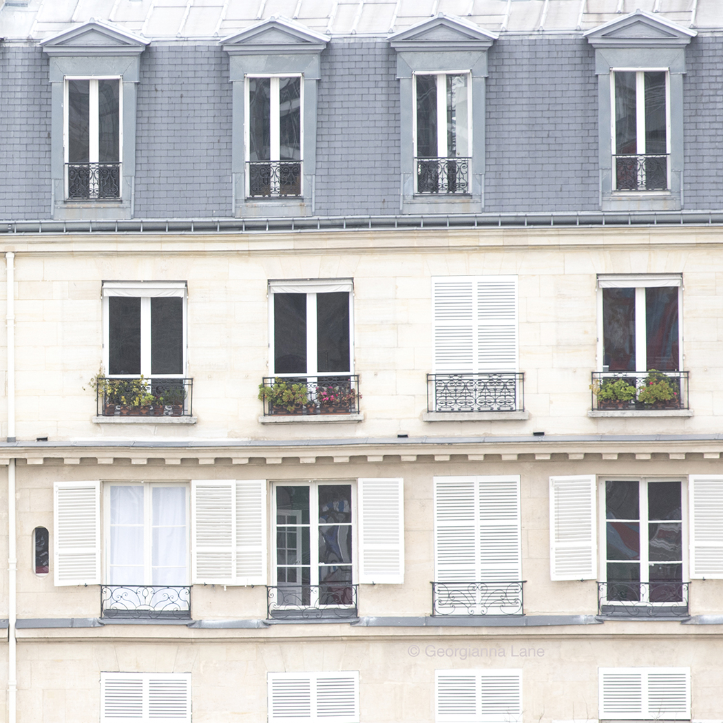 Winter Windows, Paris by Georgianna Lane