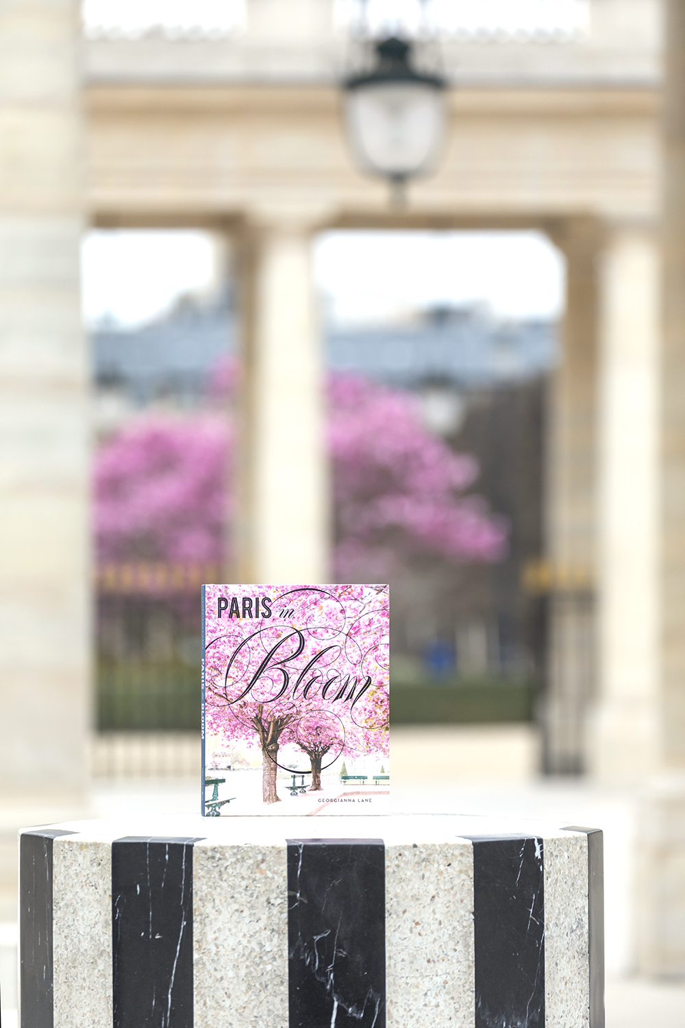 Paris in Bloom by Georgianna Lane at the Palais Royal, Paris, in Spring