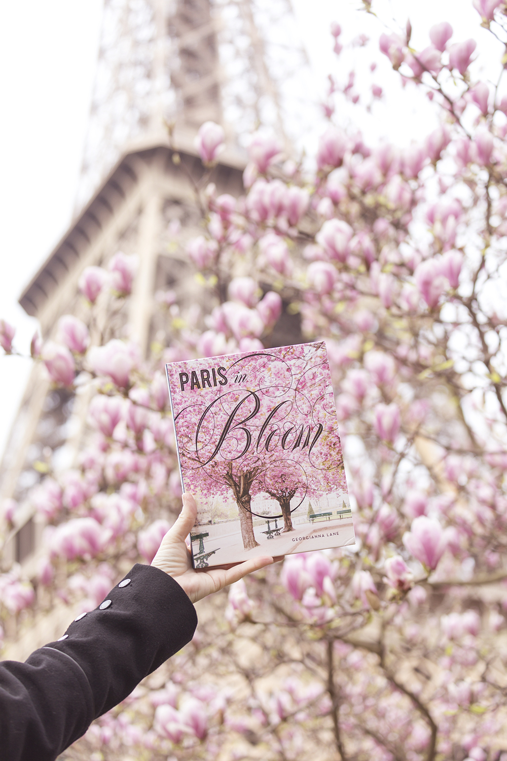 Paris in Bloom book by Georgianna Lane