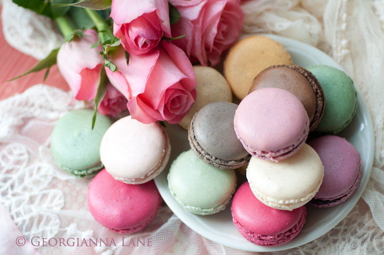 Paris Macarons And Rose Petals Georgianna Lane